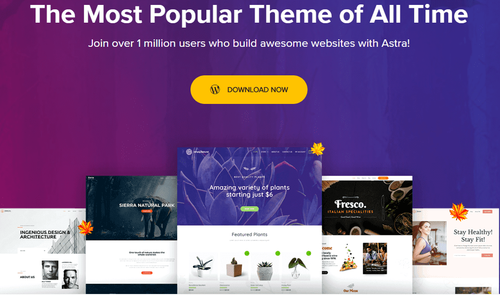 Astra theme home page